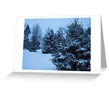 Collected Pines Greeting Card