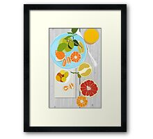 Winter Citrus Framed Print