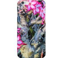 Impala Lily, Malawi iPhone Case/Skin