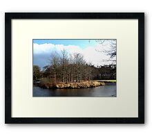 The island of the young beech-trees Framed Print