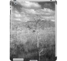 Sawgrass prairie and Cypress Island iPad Case/Skin