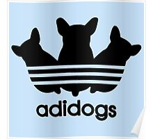 Adidogs Poster