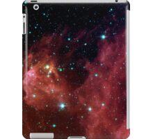 BARNARD 30 iPad Case/Skin