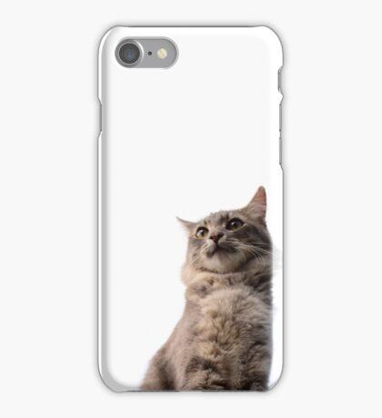Literally a cat! iPhone Case/Skin