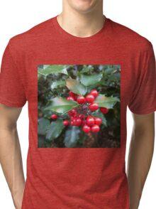 HOLLY 1 Tri-blend T-Shirt