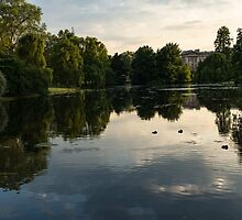 Buckingham Palace Mirror - St James's Park Lake in London, United Kingdom by Georgia Mizuleva
