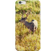 Deer Buck iPhone Case/Skin