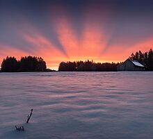 Aurora borealis? by Dominique Dubied