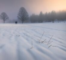 Diffused Light by Dominique Dubied