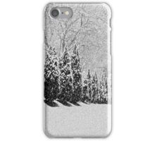 Snow Storm iPhone Case/Skin