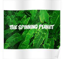 Natural World Poster