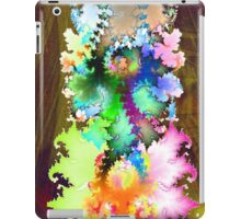 color wishes iPad Case/Skin