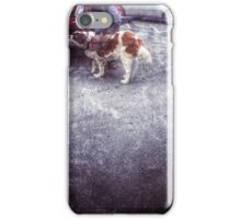 The Service Dog  iPhone Case/Skin