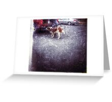 The Service Dog  Greeting Card