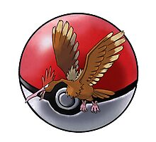 Fearow pokeball - pokemon Photographic Print