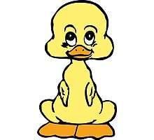 Cute Baby Duckling Photographic Print