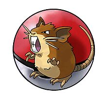 Raticate pokeball - pokemon Photographic Print
