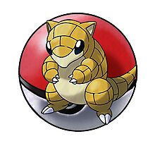 Sandshrew pokeball - pokemon Photographic Print