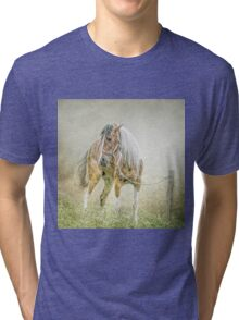 Tethered in the mist. Tri-blend T-Shirt