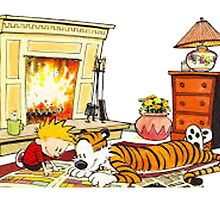 calvin and hobbes reading by danielklowor