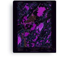 New York NY Pine Island 129001 1942 24000 Inverted Canvas Print