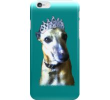 Comedy whippet in teal iPhone Case/Skin