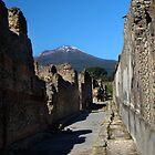 Pompeii Uncovered II by Al Bourassa