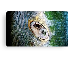 Made from Nature 11 Canvas Print