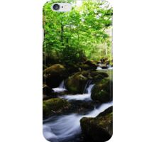 Woodlands iPhone Case/Skin