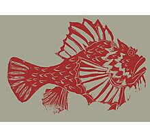 THE REDSCORPION FISH  (red on clear mud ) Photographic Print