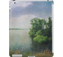 She Sat in the Sunshine and Watched the Clouds iPad Case/Skin