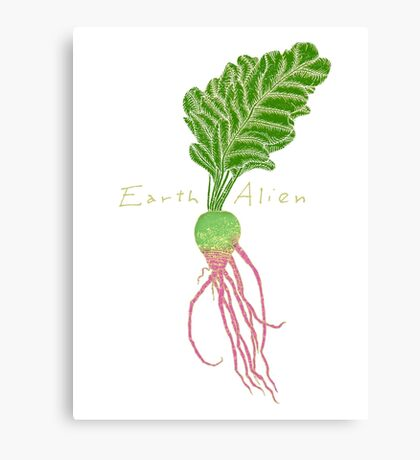 Earth Alien Watermelon Radish Canvas Print
