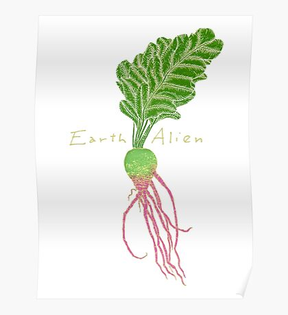Earth Alien Watermelon Radish Poster