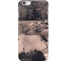 Along the Stillaguamish iPhone Case/Skin