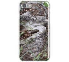 What's left of the wood pile iPhone Case/Skin