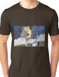 ...I keep a close eye on you dude .... Unisex T-Shirt