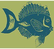 ETHNIC FISH (BLUE ON GREEN) Photographic Print