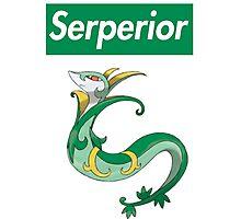 Serperior Photographic Print