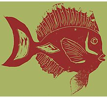 ETHNIC FISH (RED ON GREEN) Photographic Print