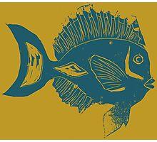 ETHNIC FISH (BLUE ON YELLOW) Photographic Print