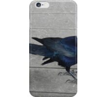Breakfast With Blue Grackles iPhone Case/Skin