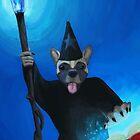 Puppy Spellcaster by CamposDO