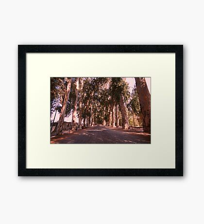 On the way to freedom - nature free spirit Framed Print