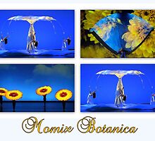 MOMIX Botanica by ©The Creative  Minds