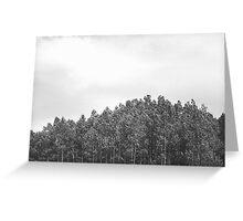 Simplistic Tree Landscape (FILM) Greeting Card
