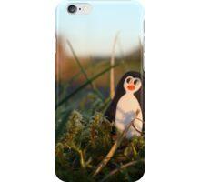 Penguin basking in twilight iPhone Case/Skin