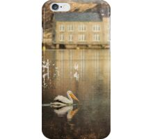 American White Pelican with filter iPhone Case/Skin
