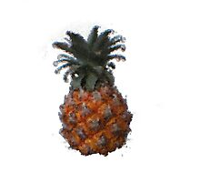Goofy Pineapple Photographic Print