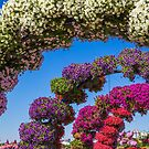 United Arab Emirates. Dubai. Miracle Garden. Flower Arches. by vadim19