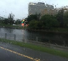 The World Through Rain by michael-derp